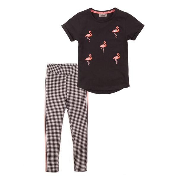 2dlg set Flamingo's